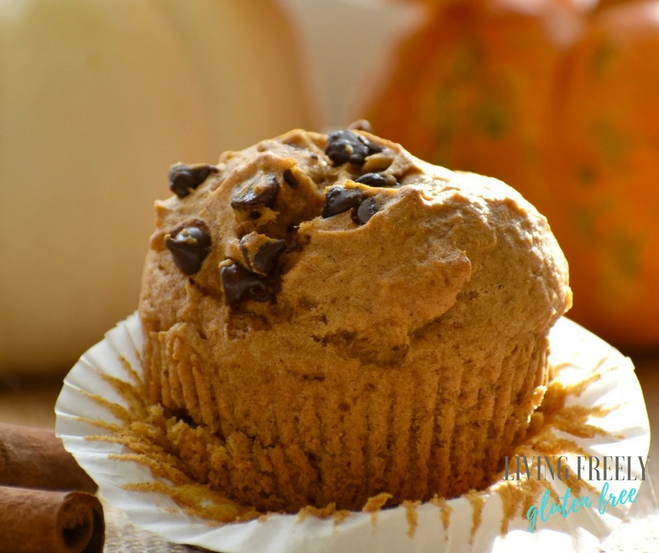 Gluten Free And Vegan Pumpkin Chocolate Chip Muffins
