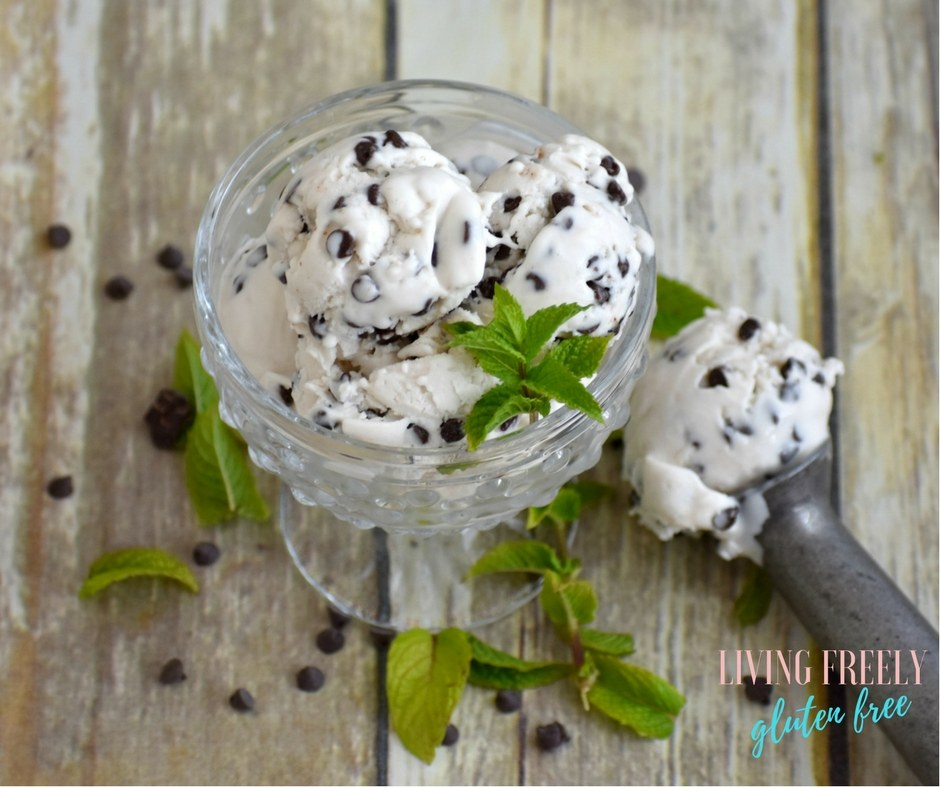 vegan mint chip ice cream in a bowl